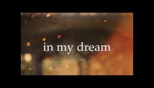 次郎(仮名)『in my dream』韻考察